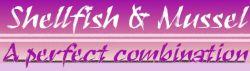 Becker Conquest Boilies Shellfish & Mussel